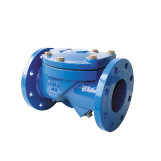 Rubber Wedge Swing Check Valve Ductile Iron PN16