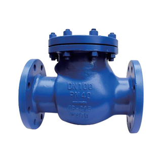 Swing Check Valve Cast Steel Pn25 DIN F6