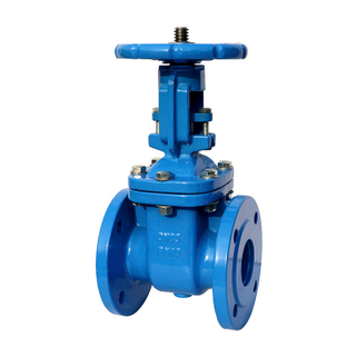 Industrial Gate Valve Cast Iron F5 Rising Stem